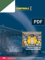 E100-10 Electronics Overview.pdf