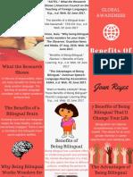 global awareness brochure  1