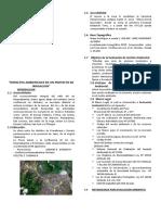 08 Impactos Ambientales en Un Proyecto de Irrigacion