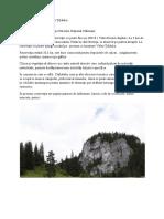 Rezervatia Geologica Piatra Tibaului