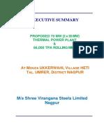 SVSL Executive Summary