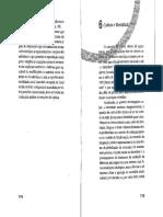 CUCHE cap 6.pdf