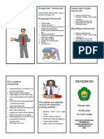 LEAFLET HEMOROID.doc