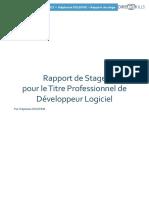 RapportDeStageDirectskills Final