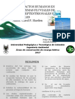 Diapositivas Articulo