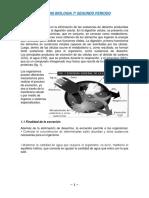 Sintesis Biologia 7-2p