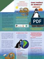 ACOREMA-MF04-Pinguino