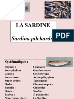 Tp Sardine 2015