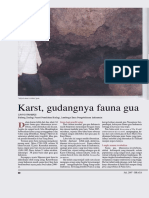 Fauna Gua Karst (2)