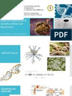Aspectos Generales de La Genética Microbiana - 3