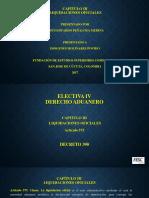 LIQUIDACIONES OFICIALES - ELECTIVA 4 (DERECHO ADUANERO) (5).pptx