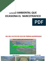 Daño Ambiental Que Ocasiona El Narcotrafico en el perú