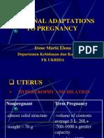 Maternal Adaptations Kul