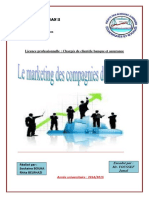 268741779-Le-Marketing-Des-Assurances.docx