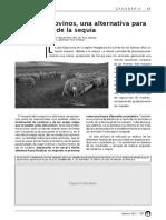 120 - Suplementacion de Ovinos en Sequia