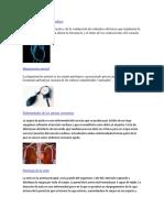 Alteraciones Del Ritmo Cardiaco