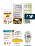Rabies Leaflet