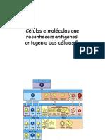 Seminario 05072017 Estrutura de Proteinas