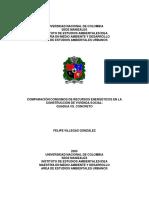 felipevillegasgonzalez.2005.pdf