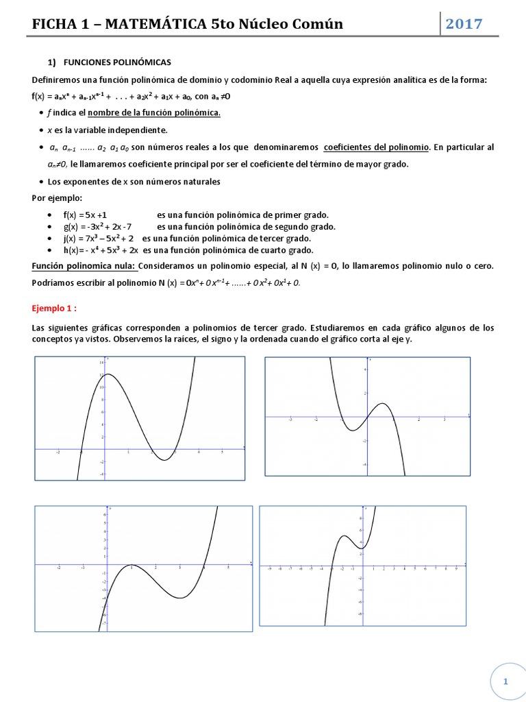Lujo Funciones Polinómicas Hoja De Trabajo Colección - hojas de ...