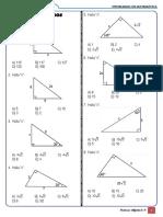 Practica - Triangulos Notables