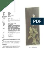 1-010.pdf