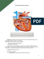Tulburări de Ritm Cardiac