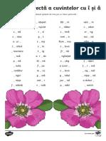 Ro2 s 20 Scrierea Corect Cu Acirc i Icirc Fi de Lucru