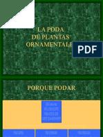 LA PODA Generalidades