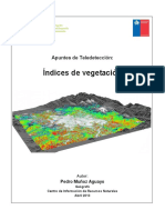 Tema Indices de Vegetación, Pedro Muñoz A