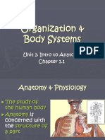 1220 Ch 1 2011 ppt | Tissue (Biology) | Stimulus (Physiology)