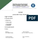 RAPORT Scoala Altfel -2017  (1).docx