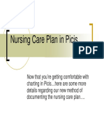 Nursing Care Plan in Picis
