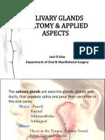salivaryglandsanatomyappliedaspects-140608050047-phpapp01