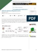 La Importancia Del Tipo de Caseína de La Leche en La Selección Genética Del Ganado Bovino - Engormix
