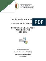 Guia Lab Bio1113