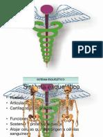 Presentación sistemas del cuerpo.ppt