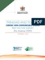 Panam Steps Report 2012 1108
