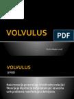 1.-Lukac-VOLVULUS.pptx
