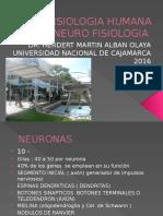 FISIOLOGIA 2. NEUROFISIOLOGIA
