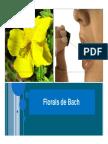 Aula de florais.pdf