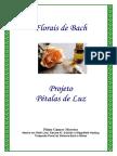 petalas_de_luz.pdf