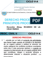Derecho Proc Principio s