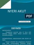 Presentasi Analgesik Dr. Husnu