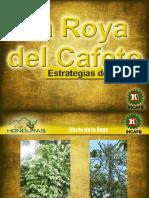 La Roya Del Cafe.- Estrategias de Control