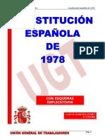 Constitución Española Luis Baneira
