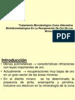 biohidrometalurgia