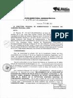 Resolucion Directoral Administrativa n 196 2017