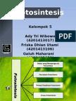 ppt Metabolisme (Fotosintesis)