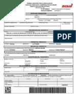 GuiaVegetalPadreAA.pdf